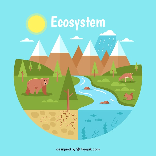 Vlak ecosysteemconcept met rivier Gratis Vector