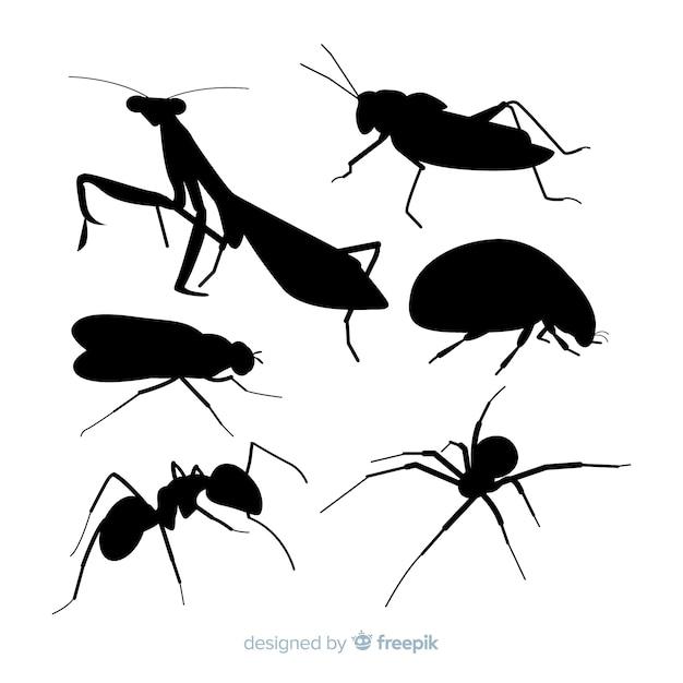 Vlakke insecten silhouetten collectie Gratis Vector