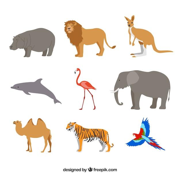 Vlakke set van wilde dieren Gratis Vector
