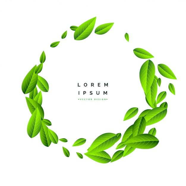 Vliegende groene bladeren op witte achtergrond Gratis Vector