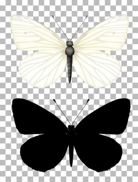 Vlinder en zijn silhouet op transparante achtergrond Gratis Vector