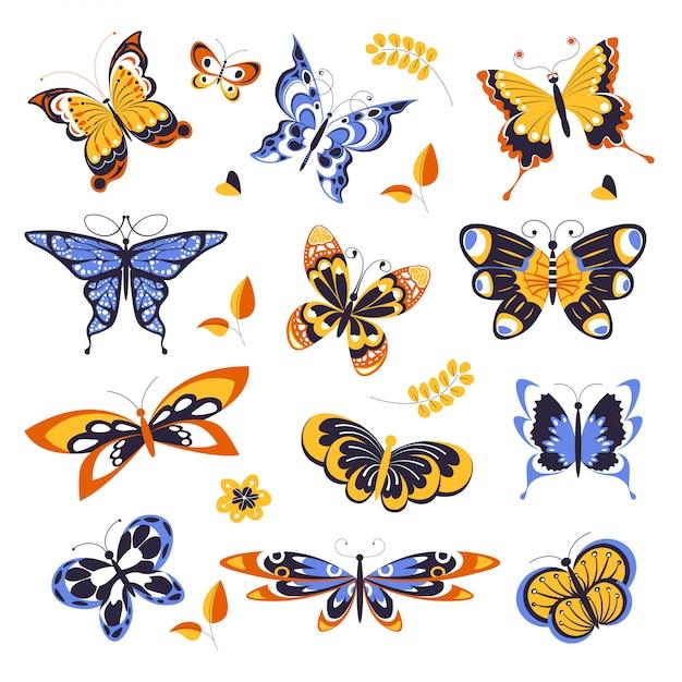 Vlinders, dieren of insecten met ornament op vleugels Premium Vector