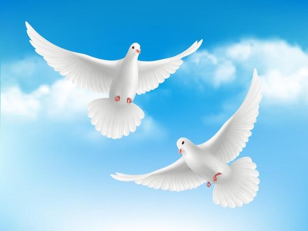 Vogel in wolken. vliegende witte duiven in concept van de blauwe hemel vreedzame religie Premium Vector