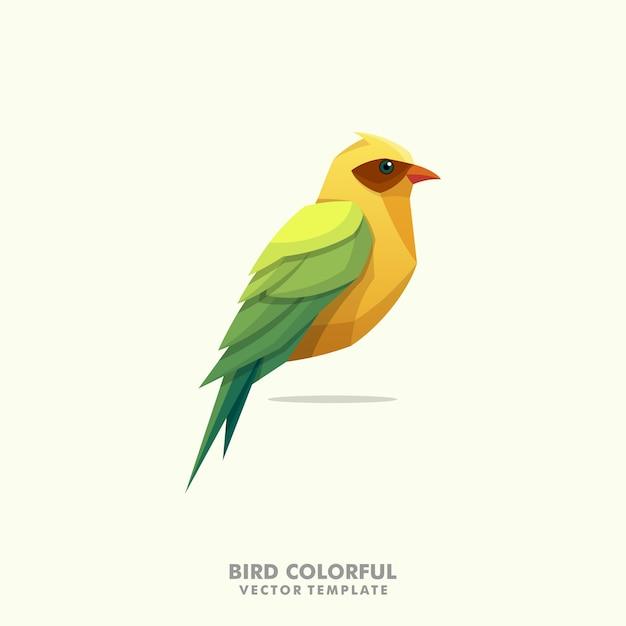 Vogel kleurrijke illustratie vector ontwerpsjabloon Premium Vector