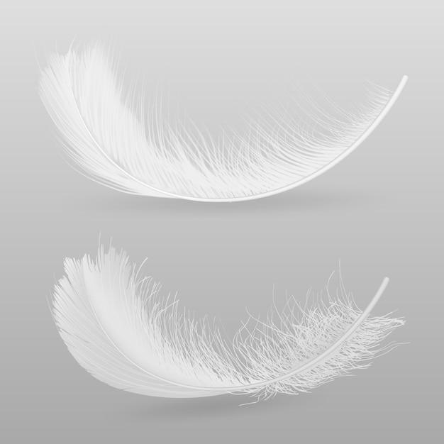 Vogels vliegen of vallen witte, pluizige veren 3d-realistische vectorillustratie geïsoleerd op een grijze achtergrond. zachtheid en breekbaarheidsymbool. tederheid en zuiverheidsconcept decoratief ontwerpelement Gratis Vector
