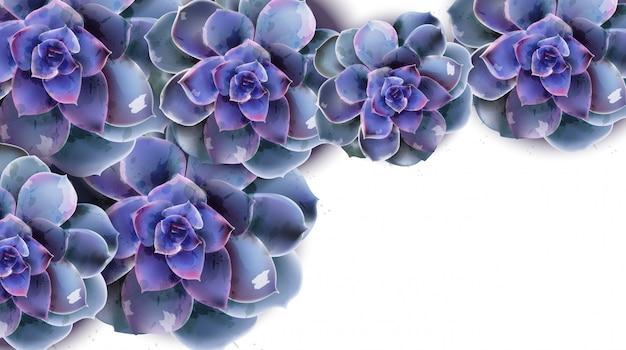Voorjaarsbanner met blauwe succulente bloemwaterverf Premium Vector