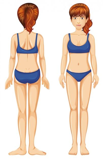 Vrouw in blauwe bikini voor en achteraanzicht Gratis Vector