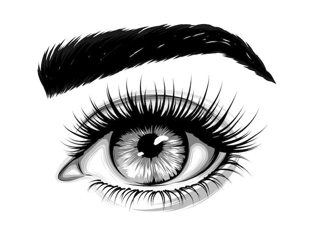 Vrouw oog met wenkbrauwen en lange wimpers Premium Vector