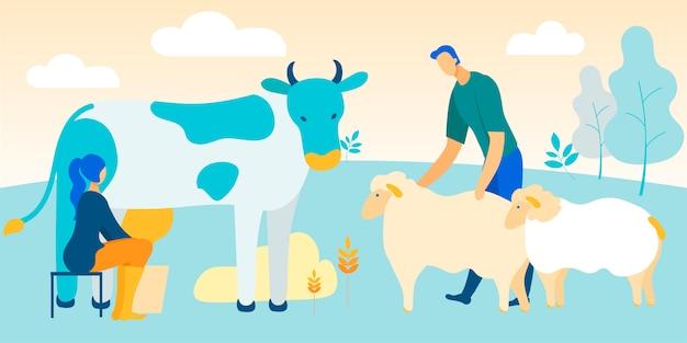 Vrouw zit op stoel koe melken. man streelde schapen Premium Vector