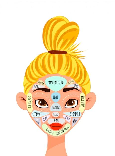 Vrouwelijk karakter met een projectie van interne organen op het gezicht. cartoon stijl. Premium Vector
