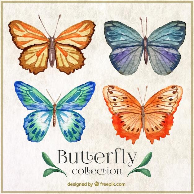 Watercolor butterflyes met abstracte ornamenten Gratis Vector