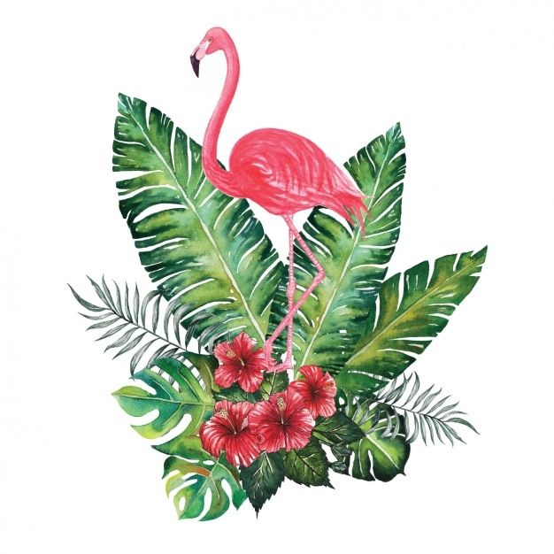 Watercolor flamingo decoratief Gratis Vector