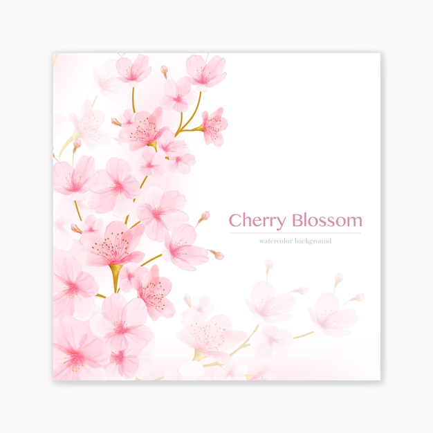 Watercolor floral cherry blossom frame vector Premium Vector
