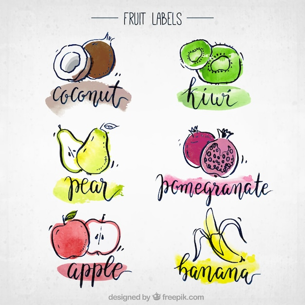 Watercolour fruit collectie Gratis Vector