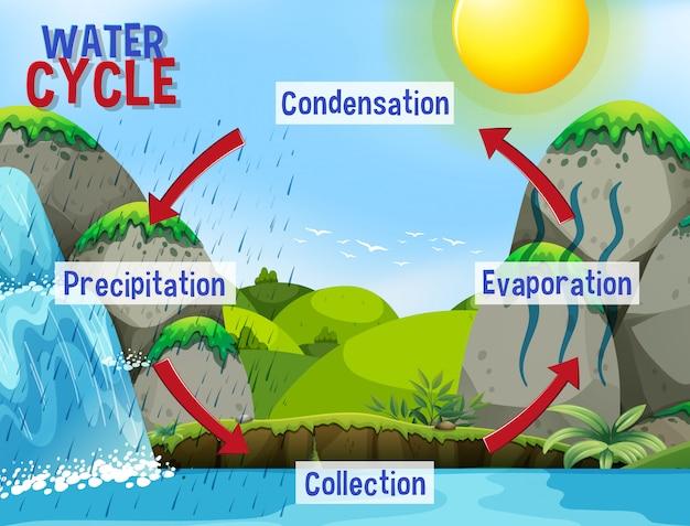 Watercyclusproces op aarde - wetenschappelijk Gratis Vector