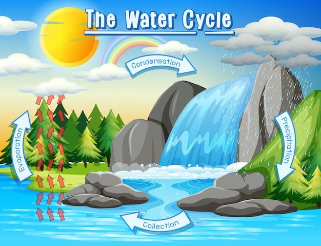 Watercyclusproces op aarde Gratis Vector