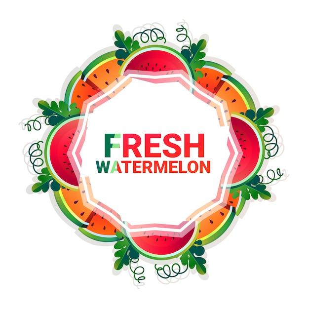 Watermeloen fruit kleurrijke cirkel kopie ruimte organische over witte patroon achtergrond Premium Vector