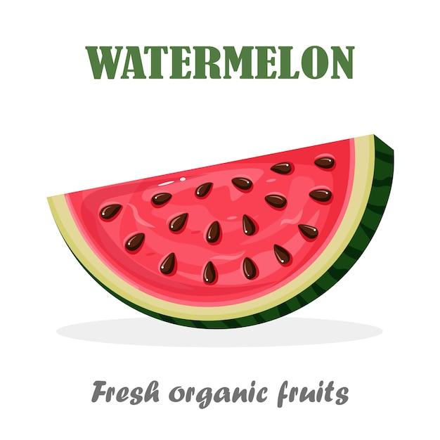 Watermeloenplak met schil en zaden op achtergrond. zomerfruit voor vegetarisch dieet, gezond leven. Premium Vector