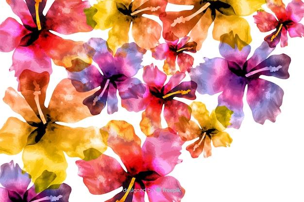 Waterverf exotische kleurrijke bloemenachtergrond Gratis Vector