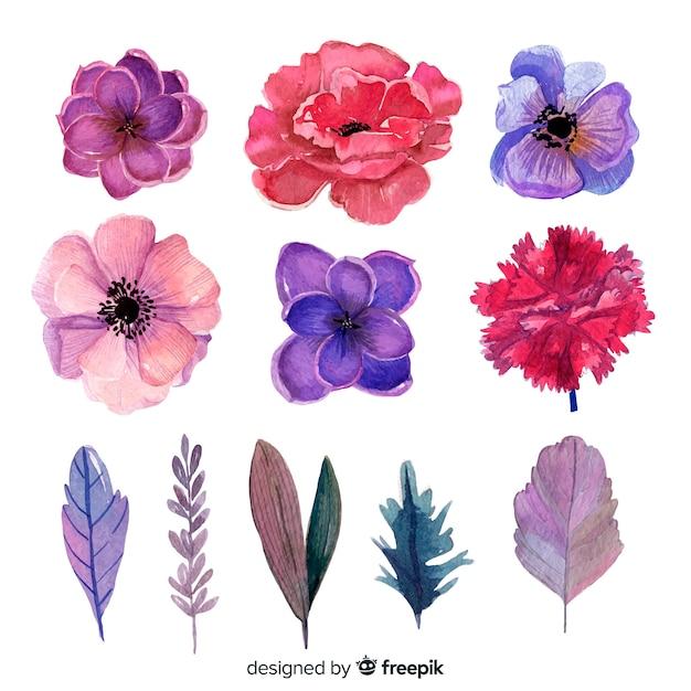 Waterverfbloemen en bladeren met intense kleuren Gratis Vector