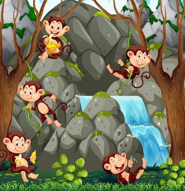 Wilde aap in de natuur Premium Vector