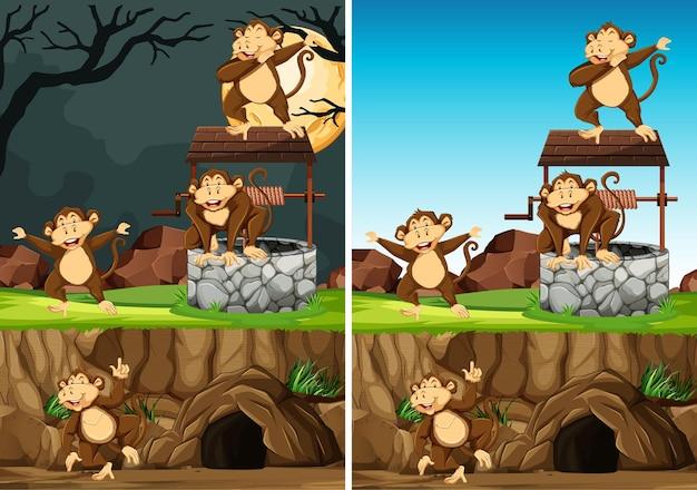 Wilde aapgroep in veel poses in dierenpark cartoon stijl geïsoleerd op dag en nacht achtergrond Gratis Vector