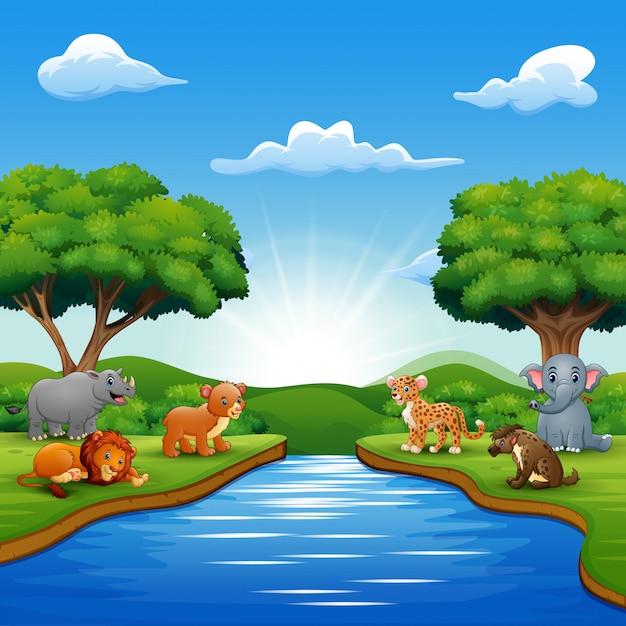 Wilde dieren genieten van de natuur bij de rivier Premium Vector