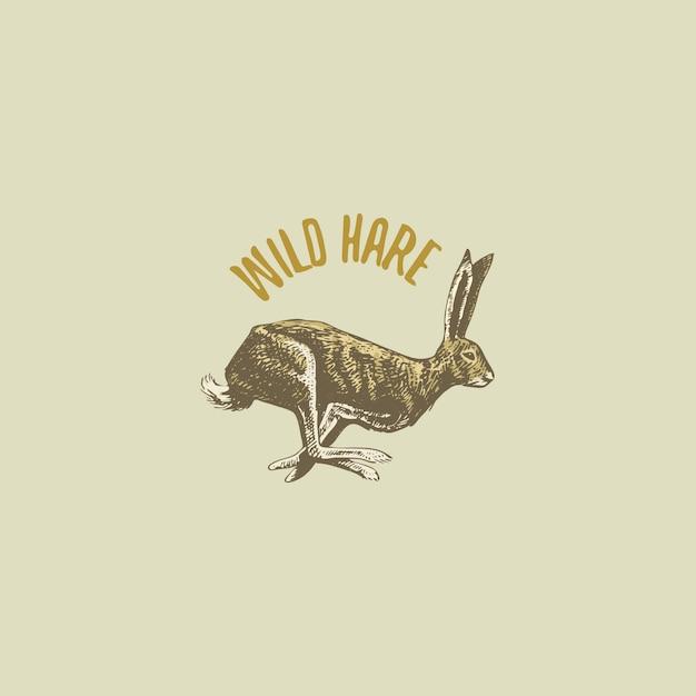 Wilde haas of konijn gegraveerd hand getrokken in oude schets stijl, vintage dieren logo Premium Vector