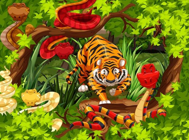 Wilde slangen en tijger in het bos Gratis Vector