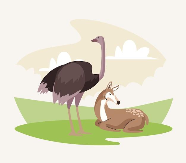Wilde struisvogel en gazelle dieren natuur iconen Premium Vector