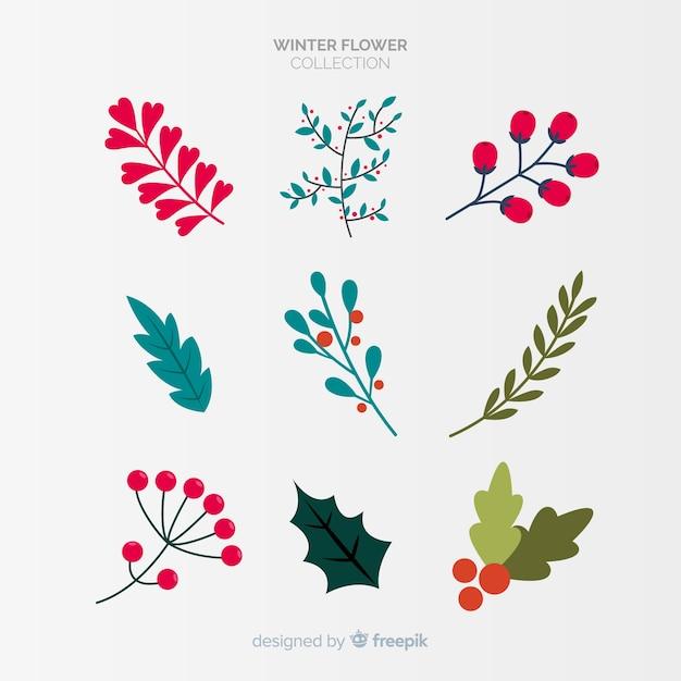 Winter bloemen collectie Gratis Vector