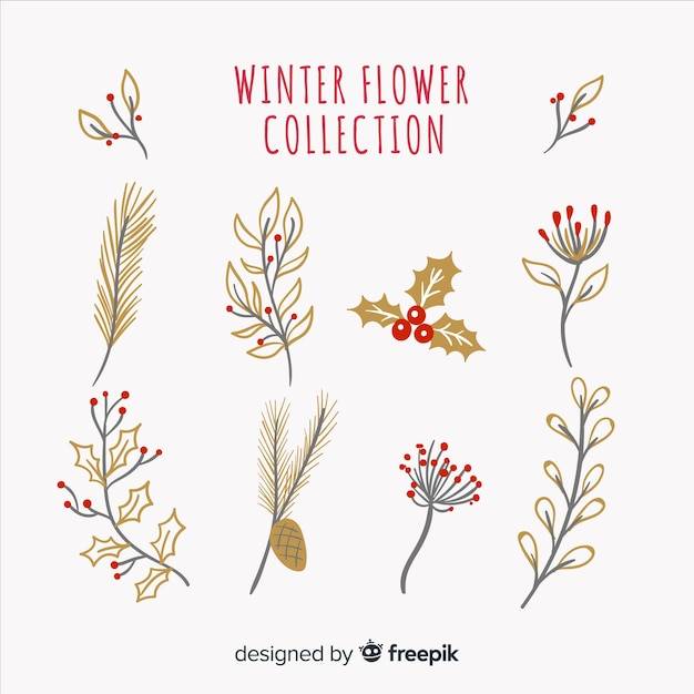 Winter bloemencollectie Gratis Vector