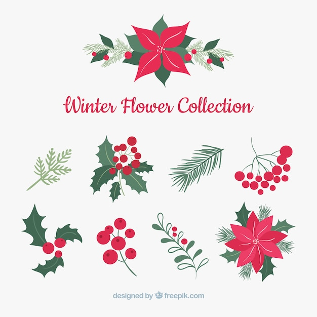 Winter bloemencollectie Gratis Vector