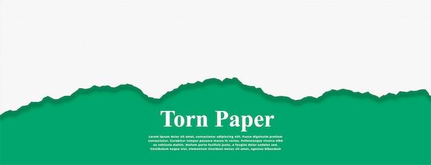 Wit gescheurd papier op turquoise kleur banner Gratis Vector