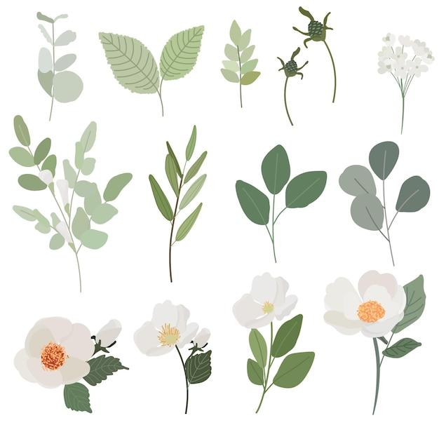 Witte camellia bloem en groene bladeren tak vlakke stijl collectie geïsoleerd op een witte achtergrond Premium Vector