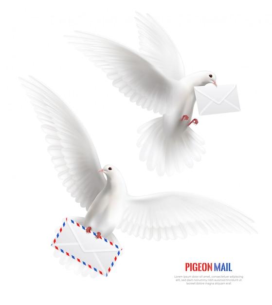 Witte duiven bezet met enveloppen Gratis Vector