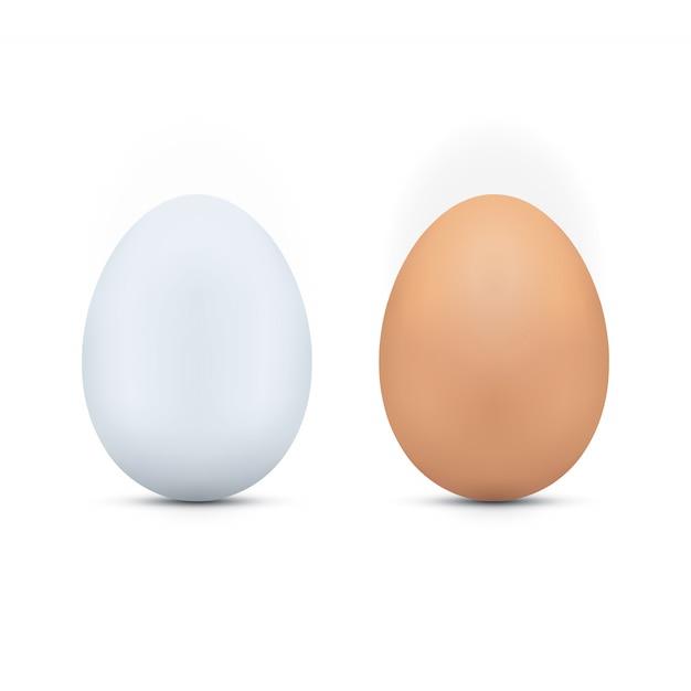 Witte en bruine eieren Premium Vector