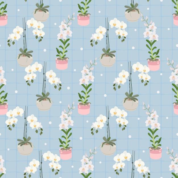 Witte phalaenopsis en dendrobium orchidee op blauw geruite naadloze patroon voor inpakpapier Premium Vector