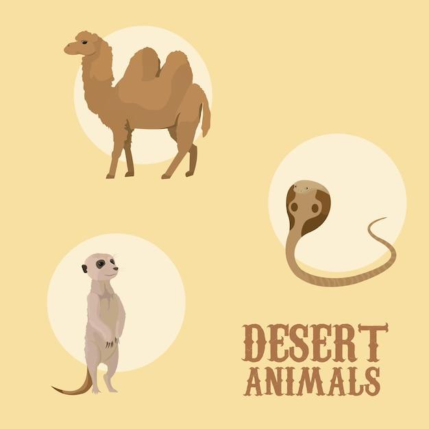 Woestijn dieren cartoon Premium Vector