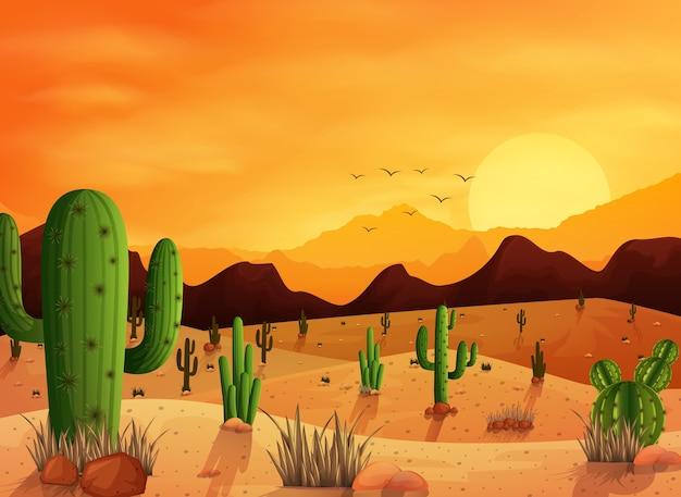 Woestijnlandschap met cactus op de zonsondergangachtergrond Premium Vector