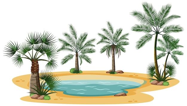 Woestijnlandschap met natuurboomelementen op witte achtergrond Gratis Vector