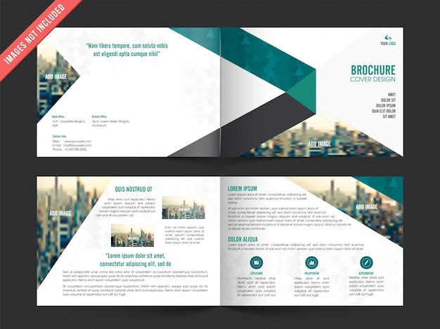Zakelijke brochure sjabloon met kleur elementen Premium Vector