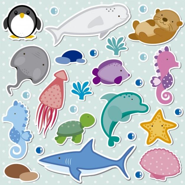 Zee dieren, collectie Gratis Vector