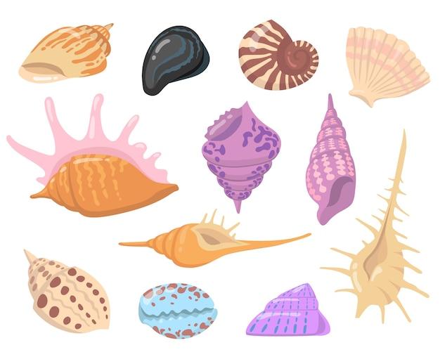 Zee of oceaan shell objecten vlakke afbeelding set. cartoon kleurrijke schelpen geïsoleerde vector illustratie collectie. water natuur en decoratie concept Gratis Vector