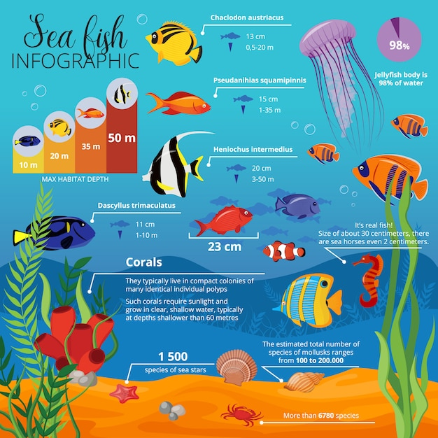 Zeedieren planten infographic met soorten vissen hun grootte en beschrijvingen Premium Vector