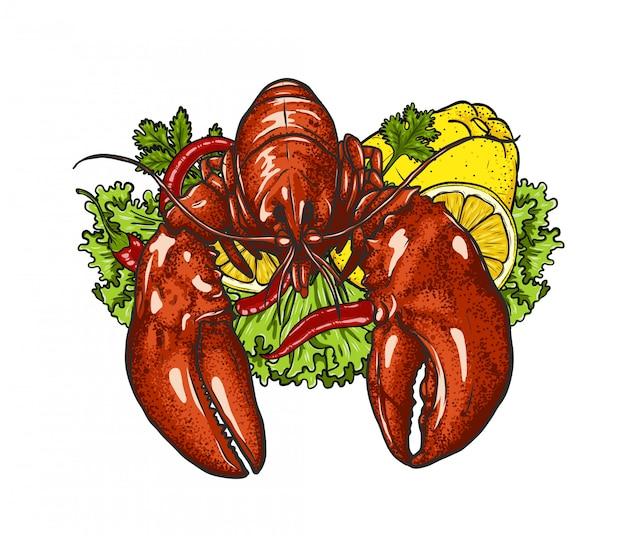 Zeekreeft met groente op wit Premium Vector