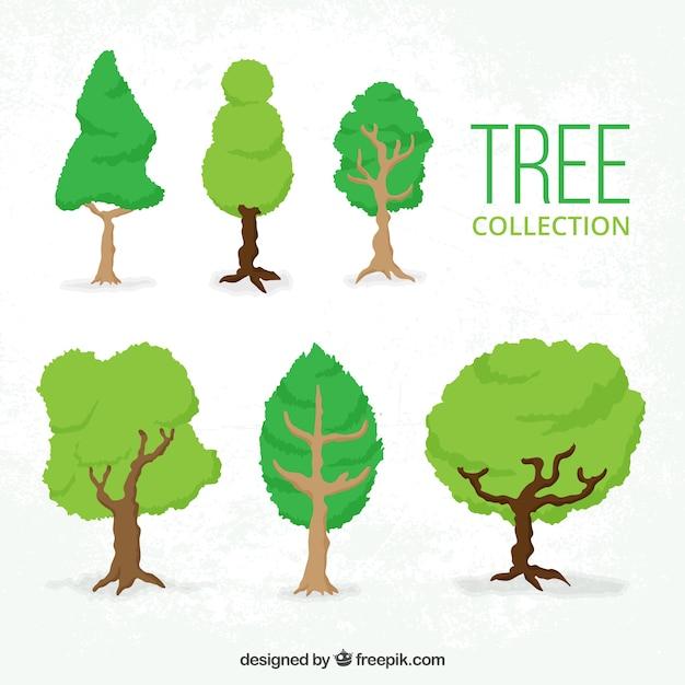Zes lommerrijke bomen Gratis Vector