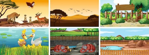 Zes scènes met dieren op verschillende tijdstippen Gratis Vector
