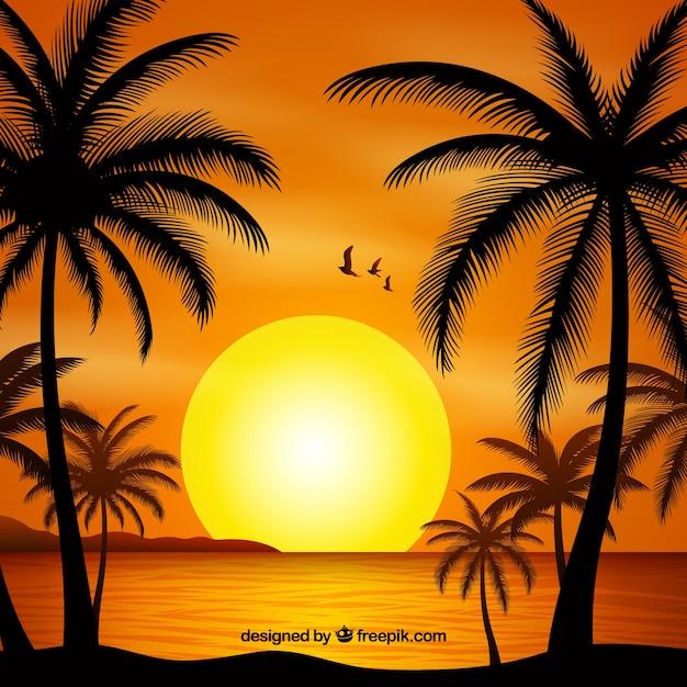 Zomer achtergrondgeluid met zonsondergang en palm bomen silhouet Gratis Vector