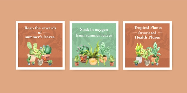 Zomerplant en kamerplanten adverteren sjabloonontwerp voor folder, boekje aquarel illustratie Gratis Vector